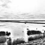 An der Nordseeküste, am Westdeutschen Strand