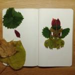 Pokemon aus Laub – Eine hübsche Collage!
