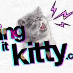 Ein geiler Song und ne Katze im Korb – Trotzdem genial!